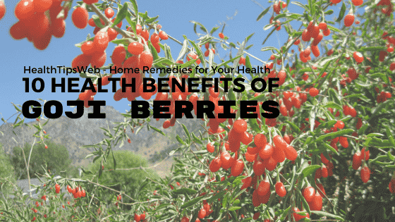 What Are Health Benefits of Goji Berries